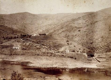 QuintaMalvedos1895_3