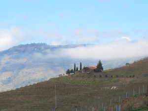 From Quinta do Tua low clouds moving over Quinta dos Malvedos