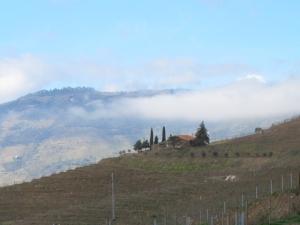 From Quinta do Tua low clouds moving over Quinta dos Malvedos