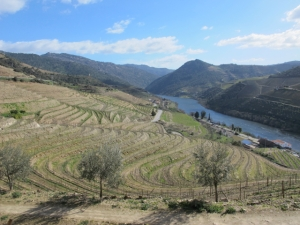 Quinta do Tua 12:47, 9 February, a beautiful sunny winter day