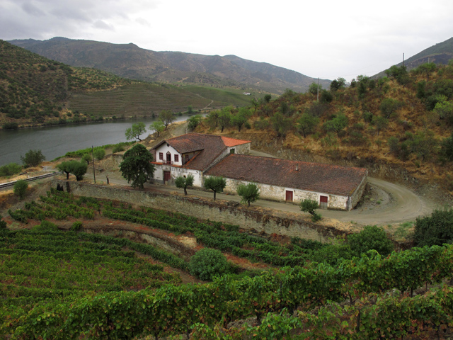 The Vale de Malhadas old winery, not currently in use (the grapes are vinfified at other Graham's quintas).