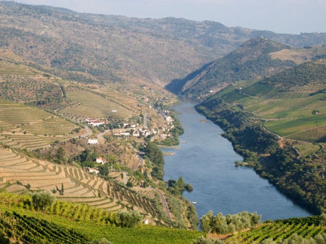 Quinta dos Malvedos (left foreground and centre) and Quinta do Tua (left background) photographed hours after the timely rain that fell on September 5th.