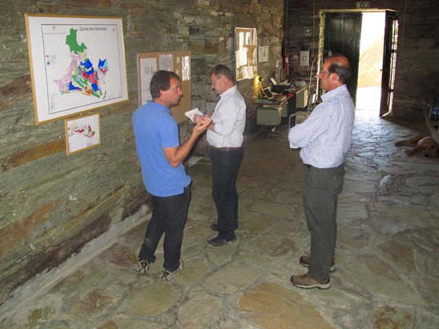 Charles, Henry and Pedro confer in the Malvedos winery, Friday, October 11th.