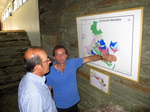 Charles and Graham's head of viticulture, Pedro Leal da Costa (left) decide on the picking order of the remaining Touriga Franca blocks at Malvedos.