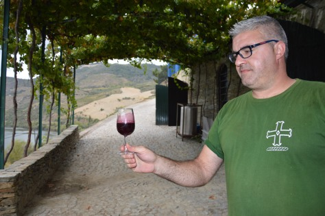 Nelson can't help being impressed by the incredible colour of the Sousão that came in from Graham's sister vineyard of Quinta do Tua.