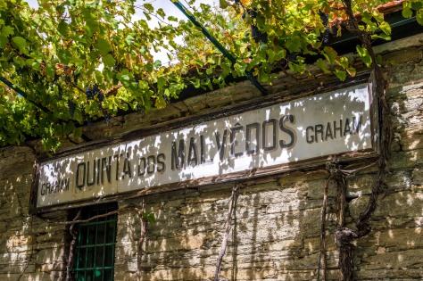 Quinta dos Malvedos 16.09.15